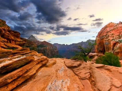 Zion National Park Wallpaper Landscape Nature