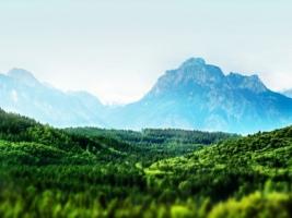 A Perfect World Wallpaper Photo Manipulated Nature