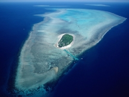 Aerial of Heron Island Wallpaper Australia World