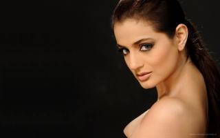 Ameesha Patel Actress