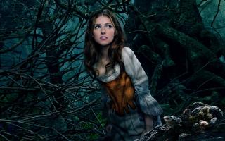 Anna Kendrick as Cinderella