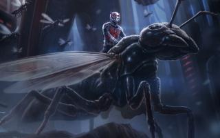 Ant Man Artwork