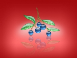 Aqua Blueberries Wallpaper Abstract 3D