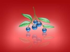 Aqua Blueberries Wallpaper Abstract 3D