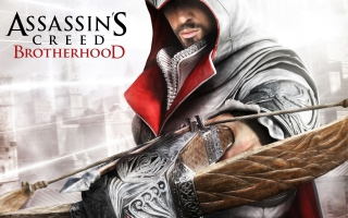 Assassin's Creed Brotherhood Game