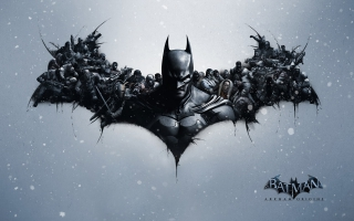 Batman Arkham Origins Video Game