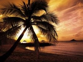 Beach Sunset Wallpaper Beaches Nature
