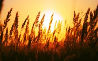 Beautiful Sun Rise