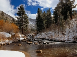 Bishop Creek Wallpaper Winter Nature