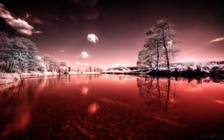 Bloody River