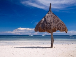 Bohol Beach Wallpaper Philippines World