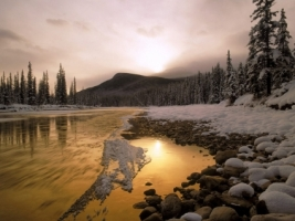 Bow River Wallpaper Winter Nature