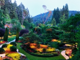 Butchart Gardens Wallpaper Plants Nature