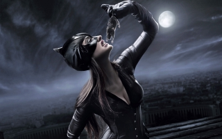 Catwoman Concept
