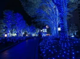 Christmas in Tokyo Wallpaper Japan World