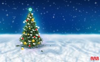 Christmas Tree Snow Sky