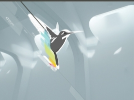 Colibri Bird Wallpaper Vector 3D