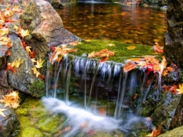 Colorfall Wallpaper Waterfalls Nature