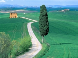 Country Road Tuscany Wallpaper Italy World