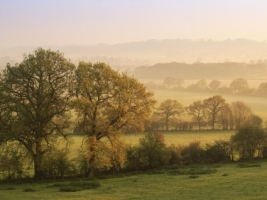 Dawn at Staunton Caundle Wallpaper England World