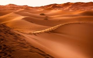 Desert Sand 4K