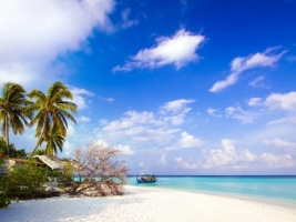 Dhiggiri island Wallpaper Maldives World