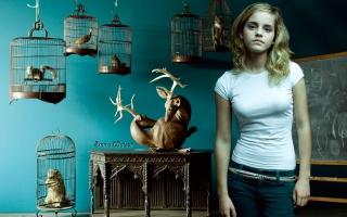 Emma Watson HD Widescreen