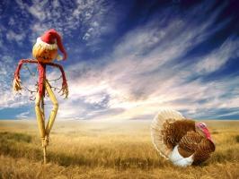 Funny Christmas Scarecrow