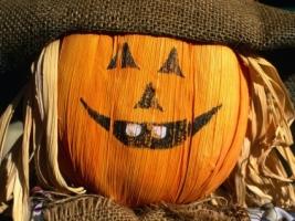 Funny Halloween pumpkin Wallpaper Halloween Holidays