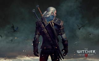 Geralt The Witcher 3 Wild Hunt