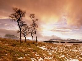 Glen Esk Scotland