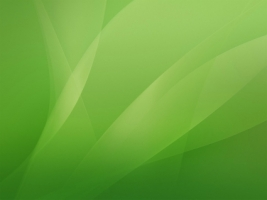Green Wallpaper Abstract Other