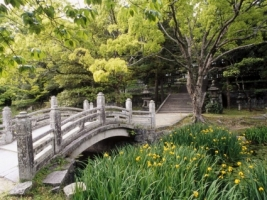 Hagi Castle Garden Wallpaper Japan World