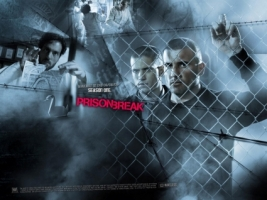 Haywire Burrows Scofield Wallpaper Prison Break Movies