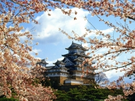 Himeji jo Castle Wallpaper Japan World