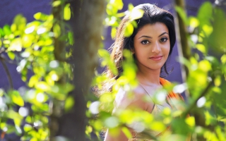 Kajal Wallpapers For Free Download About 42 Wallpapers