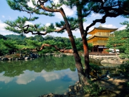 Kinkaku ji Temple Kyoto Wallpaper Japan World