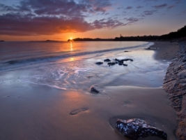 Kohimarama Beach Wallpaper Beaches Nature