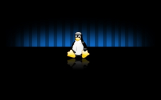 Linux Widescreen