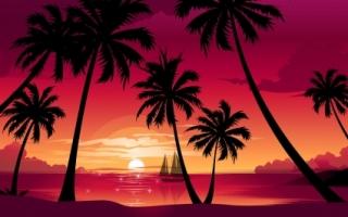 Magneta Sunset Wallpaper Vector 3D
