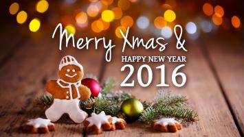 Merry Xmas New Year 2016