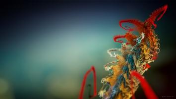 Micro Plant