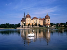 Moritzburg Castle Wallpaper Germany World