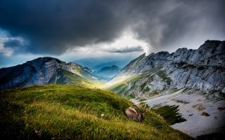 Mount Pilatus Switzerland