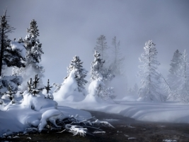 Mystic Winter Wallpaper Winter Nature