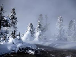 Mystic Winter Wallpaper Winter Nature