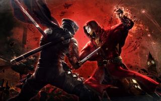 Ninja Gaiden 3 Game