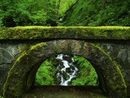 Old Bridge Wallpaper Rivers Nature