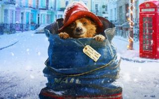 Paddington 2014 Movie