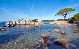 Palombaggia Beach Sunny